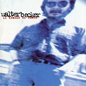 11 Tracks Of Whack by Walter Becker