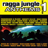 Ragga Jungle Anthems (Volume One) by Various Artists